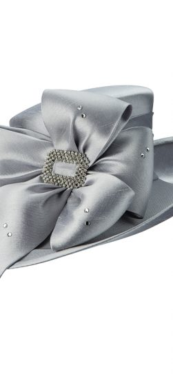 hg1103, silver hat